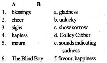 The Blind Boy Notes Class 10 KSEEB Solution