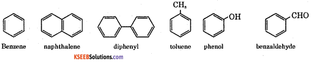 1st PUC Chemistry Question Bank Chapter 12 Organic Chemistry Some Basic Principles and Techniques -9