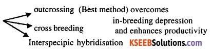 2nd PUC Biology Question Bank Chapter 9 Strategies for Enhancement in Food Production 1