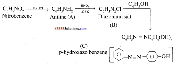 2nd PUC Chemistry Question Bank Chapter 13 Amines - 100
