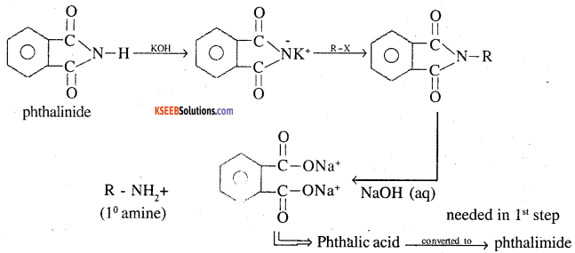 2nd PUC Chemistry Question Bank Chapter 13 Amines - 11(ii)