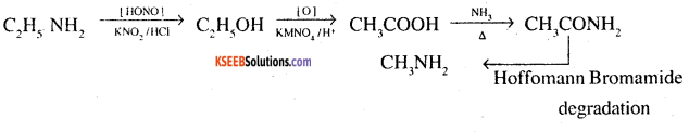 2nd PUC Chemistry Question Bank Chapter 13 Amines - 17