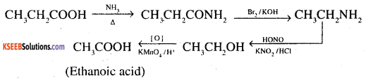 2nd PUC Chemistry Question Bank Chapter 13 Amines - 21