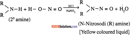 2nd PUC Chemistry Question Bank Chapter 13 Amines - 3