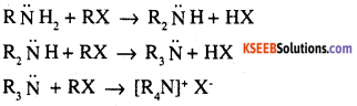 2nd PUC Chemistry Question Bank Chapter 13 Amines - 30