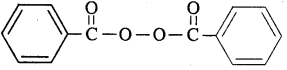 2nd PUC Chemistry Question Bank Chapter 15 Polymers - 7
