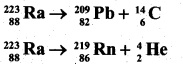 2nd PUC Physics Question Bank Chapter 13 Nuclei 40