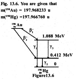 2nd PUC Physics Question Bank Chapter 13 Nuclei 47