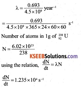 2nd PUC Physics Question Bank Chapter 13 Nuclei 58
