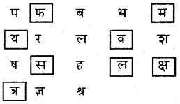 KSEEB Solutions for Class 6 Hindi Chapter 2 वर्णमाला 7