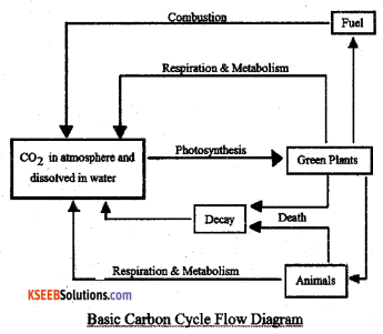 2nd PUC Biology Model Question Paper 4 with Answers 6