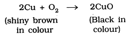 KSEEB SSLC Class 10 Science Solutions Chapter 1 Chemical Reactions and Equations 9