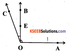 KSEEB Solutions for Class 6 Maths Chapter 4 Basic Geometrical Ideas Ex 4.3 3