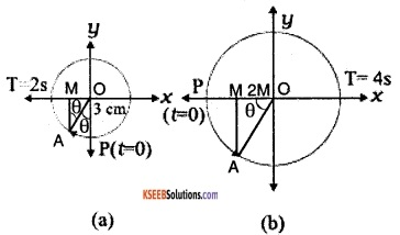 1st PUC Physics Question Bank Chapter 14 Oscillations img 7